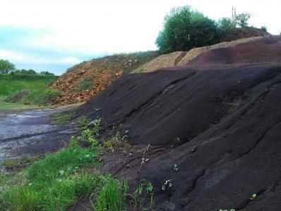 Im Hintergrund Halde mit Sinemurium Sandstein