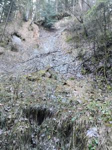 Cyrenen-Schichten Chattium (Egerium)